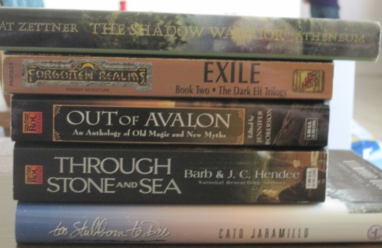 Mary's Book Spine Poem